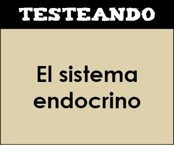 El sistema endocrino. 3º ESO - Biología (Testeando)