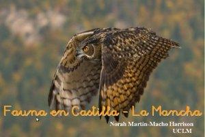 Fauna en Castilla - La Mancha