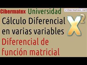 Diferencial de Función Matricial. Cibermatex