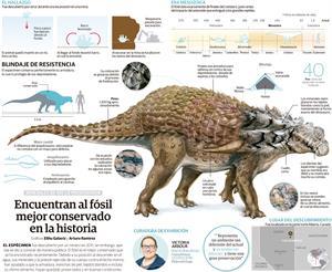 Encuentran al fósil mejor conservado en la historia (La Razón)