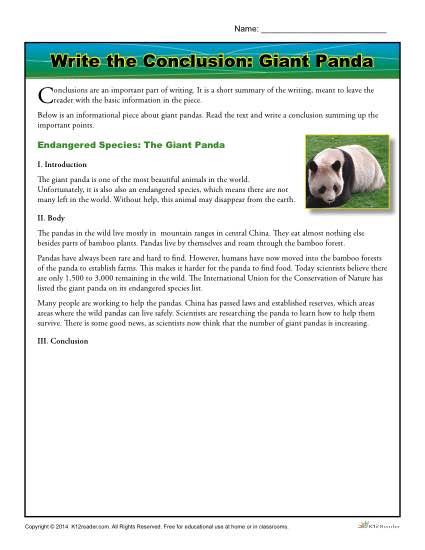 Write the Conclusion: Giant Panda