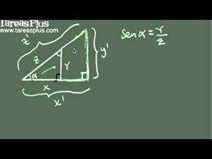 Introducción a las razones trigonométricas fundamentales (Tareas Plus)