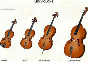 Les violons (Dictionnaire Visuel)