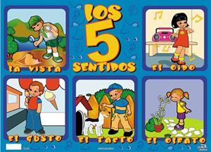 Los sentidos, un recurso educativo JClic (Clic.xtec.cat)