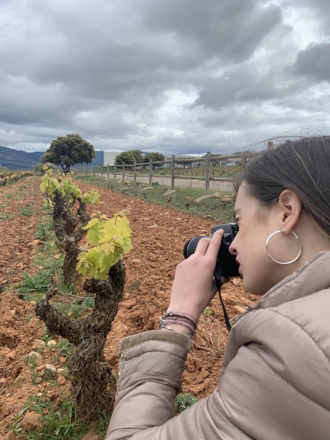 Visita Rally Fotográfico y Diseño entre Viñedos