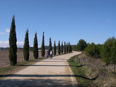 Etapa 7, Logroño - Nájera