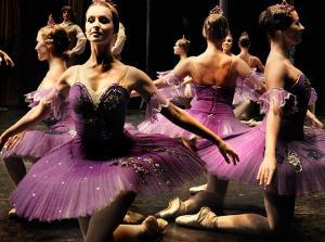 Disfruta del Ballet de Moscú y de La Bella Durmiente en Riojaforum