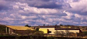Bodegas Valenciso