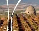Route du vin dans la Haute-Rioja