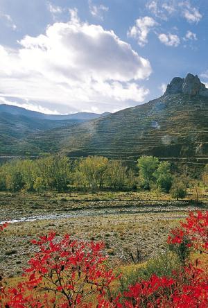 Route dans la Réserve de la Biosphère de La Rioja