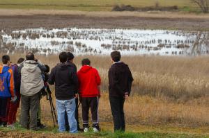 Observación de Aves en La Rioja