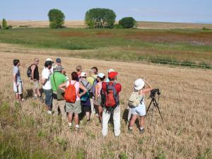 Conoce los espacios y especies protegidas de La Rioja
