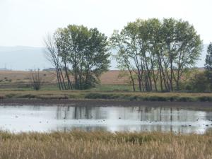 Área Natural Singular la laguna de Hervías