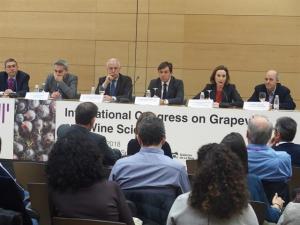 Unos 200 expertos mundiales, hasta el viernes en Logroño en el Congreso Internacional de Ciencias de la Vid y el Vino