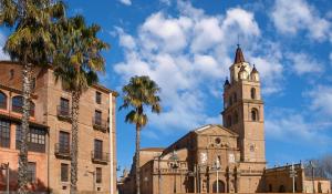 Visitas guiadas a la catedral de Calahorra