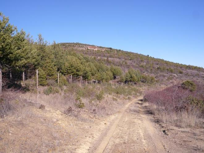 Etapa 10, Cornago - Cervera del Río Alhama