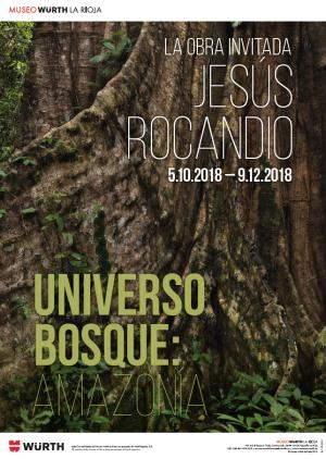 Universo bosque: Amazonia