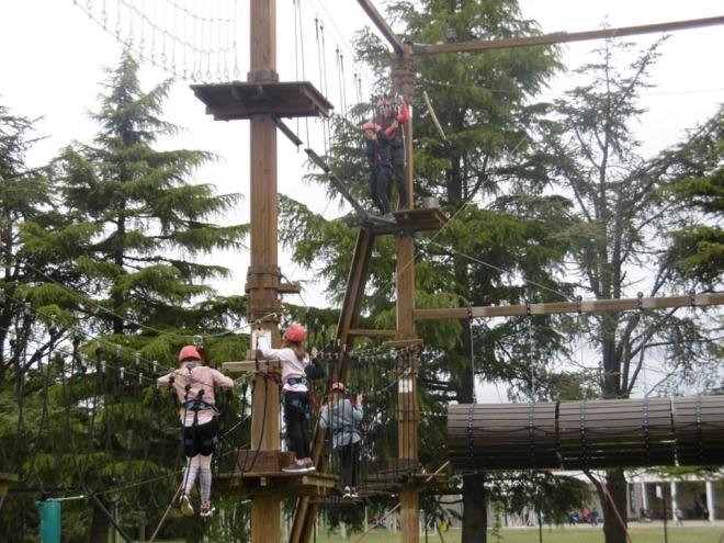 """Parque de aventura """"Ojapark"""""""