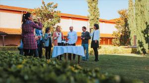 Garden Wine Tour