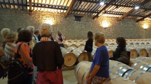 Winebus La Rioja