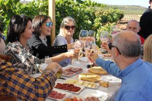 Visita al viñedo con almuerzo y actividad vitícola + bodega y cata