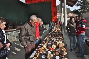 XXIX Jornadas Micológicas en Arnedillo