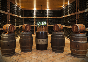 Escape Room and tasting in Bodegas Alvia