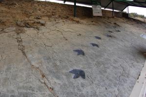Yacimientos de icnitas de Cornago - Los Cayos