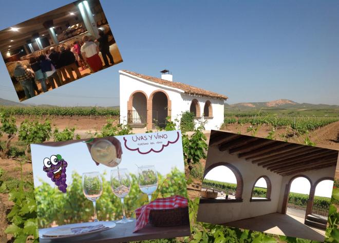 Tasting wines.... in the vineyard