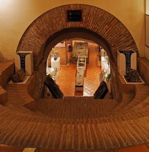 Museo de Ciencias Naturales de Arnedo
