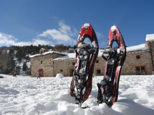 Aventura invernal en 4x4 y raquetas de nieve en el Parque Natural Sierra de Cebollera