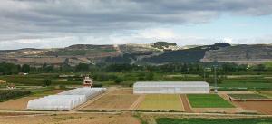 Los Premios Capital reconocen la labor de nueve entidades en favor del sector agrario