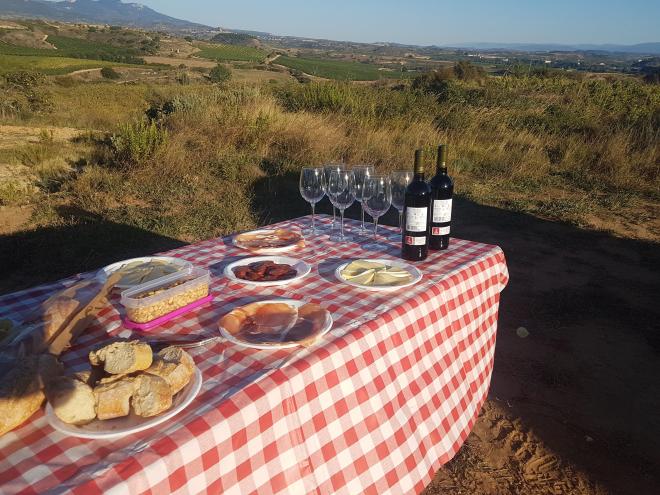 Visita guiada a las viñas