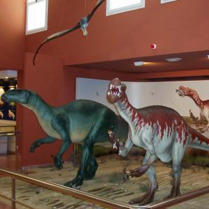 Centre d'Interprétation Paléontologique de La Rioja