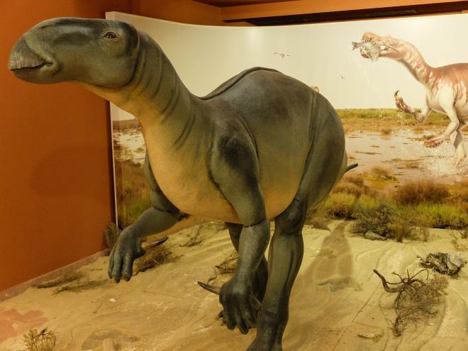 Paläontologisches Informationszentrum La Rioja