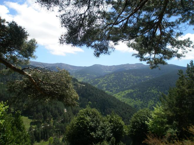 """Parque Natural de """"Sierra Cebollera"""""""