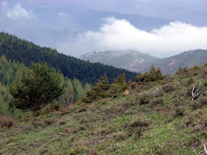 Etapa 1, Ezcaray - Valvanera