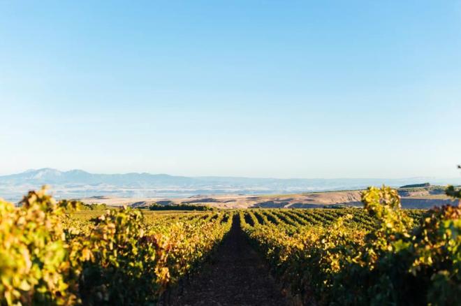 Esencias de Rioja