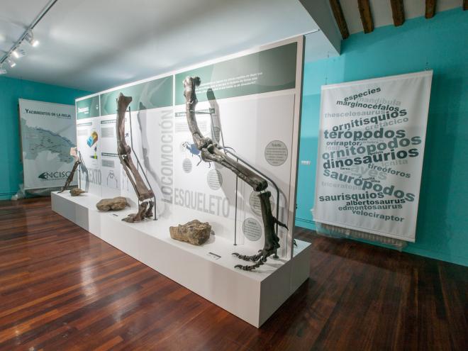 Centro Paleontológico de Enciso