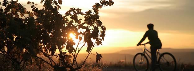 Mountainbike-Rundwanderwege des Biosphärenreservats La Rioja
