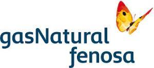 Fundación Gas Natural Fenosa organiza un seminario sobre oportunidades que abre la directiva europea sobre eficiencia