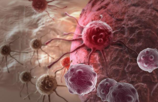 La AEDV presenta las guías de práctica clínica para el cáncer de piel en la reunión del GEDOC