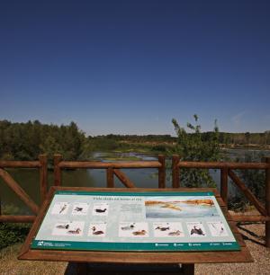 Centro de Interpretación de los Sotos del Ebro