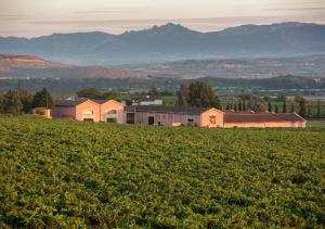 En clave de Rioja