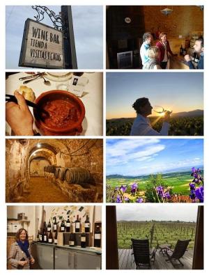 Tour privado en La Rioja
