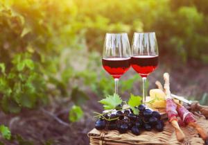Picnic entre viñedos