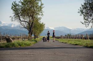 La Rioja Film Commission (LaRFC)