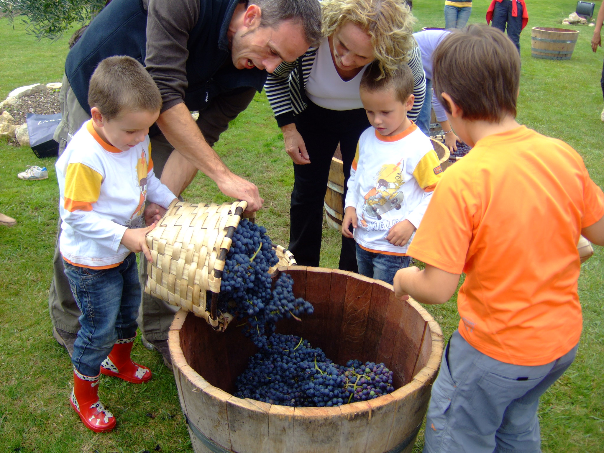 Wine tourism for kids