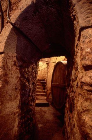 Interior bodega Cenicero