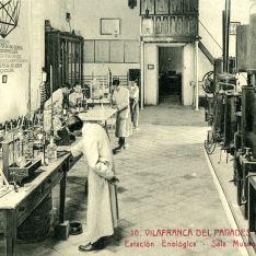 Estación Enológica de Vilafranca del Panadés